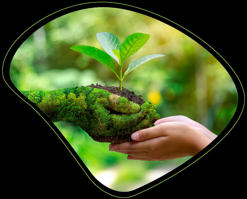 Compromiso Pladur con el medio ambiente